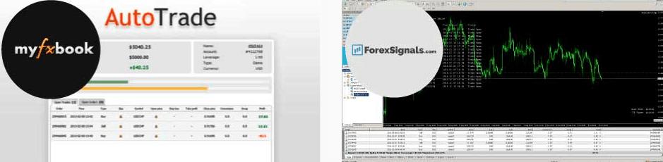 Royal Financial Trading social trading